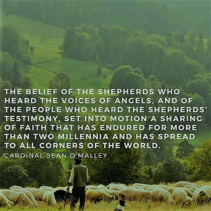 shepherd pic